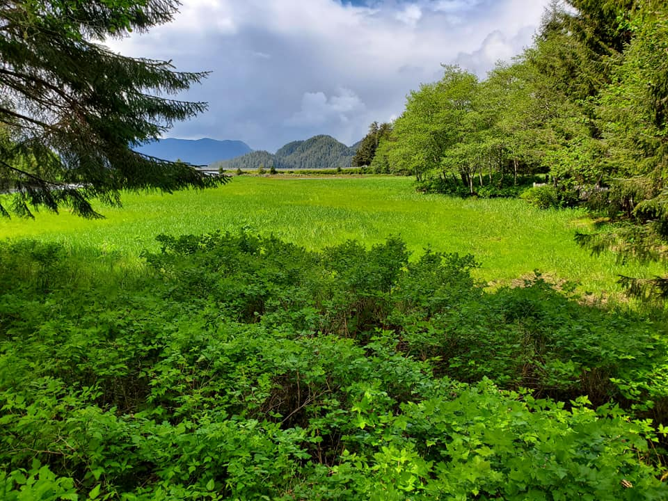Sitka, AK landscape by Angling Unlimited